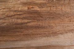 背景和设计的木棕色自然纹理 免版税库存照片