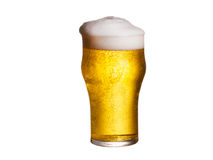 背景啤酒杯查出的白色 侥幸 库存照片