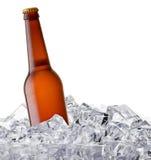 背景啤酒瓶例证桔子向量 库存图片