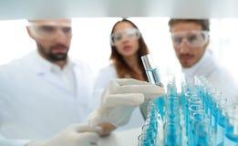 背景图象是学习在玻璃管的一个小组科学家液体 库存照片