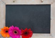 背景图画木面板的葡萄酒 库存图片