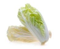 背景圆白菜中国白色 免版税库存照片