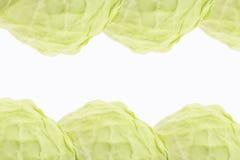 背景圆白菜模式 库存照片