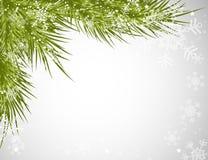 背景圣诞树 向量例证