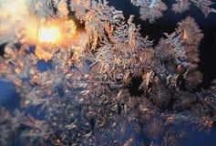 背景圣诞节冬天 图库摄影