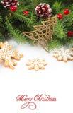 背景圣诞节冷杉框架绿色结构树 免版税库存图片
