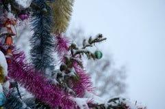背景圣诞节新年度 在雪的树 圣诞节12月 免版税库存图片