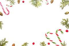 背景圣诞节构成白色 与棒棒糖、绿色金钟柏枝杈,杉木锥体和红色狂放的Xmas框架上升了 免版税库存图片