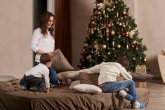背景圣诞节系列愉快的超出结构树白色 库存照片
