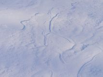 背景多雪的冬天 库存图片