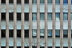 背景大厦现代办公室视窗 免版税库存图片