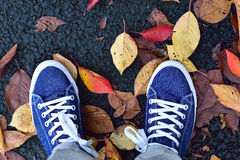 背景对有下落的秋叶的蓝色帆布鞋 免版税图库摄影