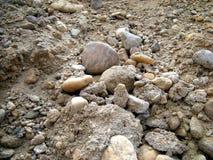 背景小卵石 图库摄影