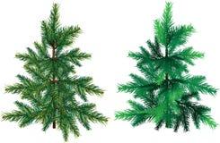 背景常青结构树白色 库存例证