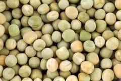 背景干绿豆 免版税库存照片