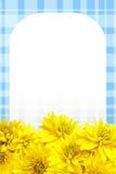 背景开花瓣黄色 库存照片