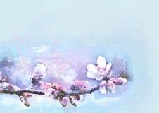 背景开花的樱桃接近的花卉日本春天结构树 额嘴装饰飞行例证图象其纸部分燕子水彩 库存图片