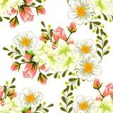 背景开花花开花天空白色 无缝抽象高雅的模式 图库摄影