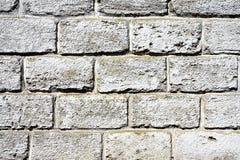背景影像白色砖砌 免版税图库摄影