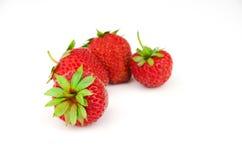 背景成熟草莓白色 免版税库存照片