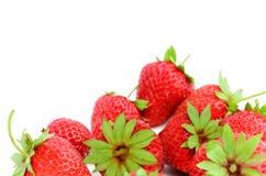 背景成熟草莓白色 图库摄影