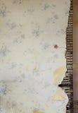 背景损坏的房子老墙壁 免版税库存照片