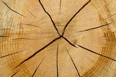 背景收益木头 免版税库存照片
