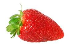 背景新查出的草莓白色 免版税库存照片