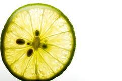 背景新鲜水果水多的石灰热带白色 夏令时 免版税库存照片