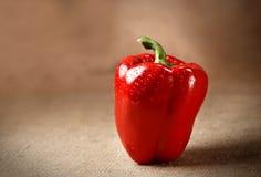 背景新鲜的胡椒红色袋装 库存图片