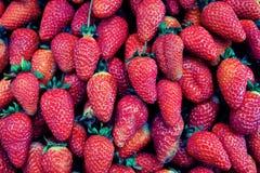 背景新鲜的草莓 夏天 维生素 纹理 免版税库存图片