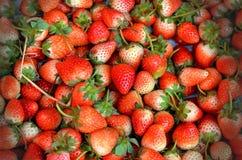 背景新鲜的草莓 库存照片