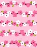 背景无缝开花的樱桃 库存图片