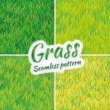 背景无缝草绿色的模式 免版税库存照片