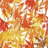 背景无缝grunge的槭树 向量例证
