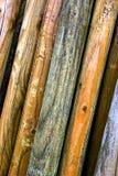 背景日志垂直木头 免版税库存照片