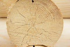 背景日志自然模式墙壁 免版税库存照片