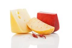 背景明亮的干酪colorul 免版税库存照片