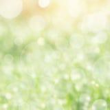 背景明亮的春天 图库摄影