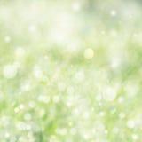 背景明亮的春天 免版税库存图片