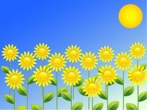 背景春天向日葵 库存照片