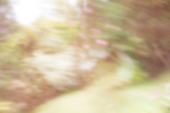 背景有色种人音乐向量 这由照相机blured 库存照片
