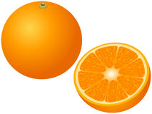 背景果子例证桔子向量 库存照片