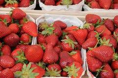 背景果子查出的草莓白色 库存照片