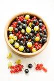 背景果子混合白色 免版税库存图片
