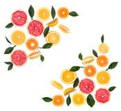 背景柑橘水果查出白色 被隔绝的柑橘水果 被隔绝的柠檬、粉红色葡萄柚和桔子片断  免版税库存图片