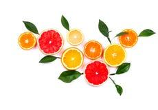 背景柑橘水果查出白色 被隔绝的柑橘水果 被隔绝的柠檬、粉红色葡萄柚和桔子片断  库存图片