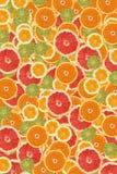 背景柑橘片式 库存图片
