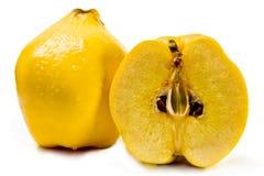 背景柑橘白色 库存图片