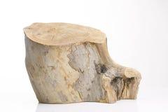 背景查出的树桩结构树白色 免版税库存照片